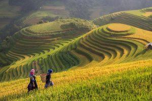 vietnam-image-gallery-9